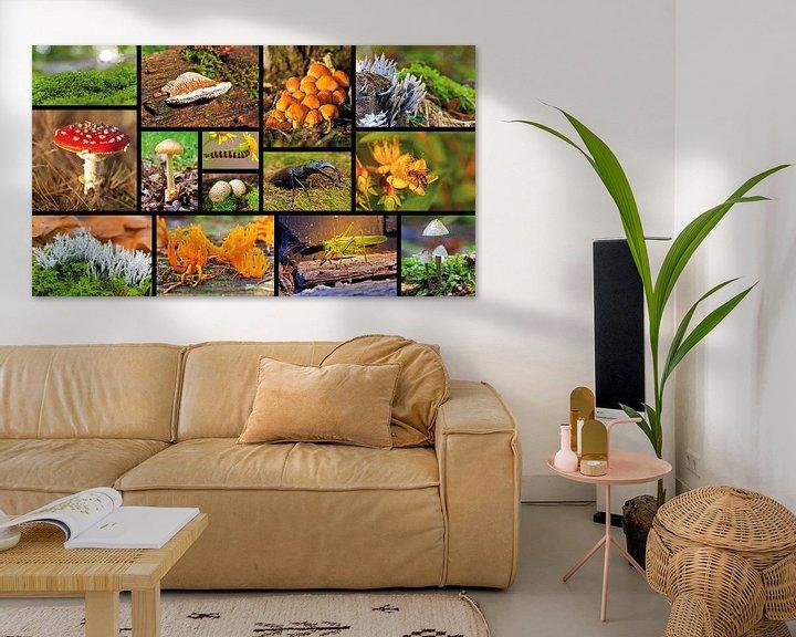 Sfeerimpressie: Collage macro landschap van Anton de Zeeuw
