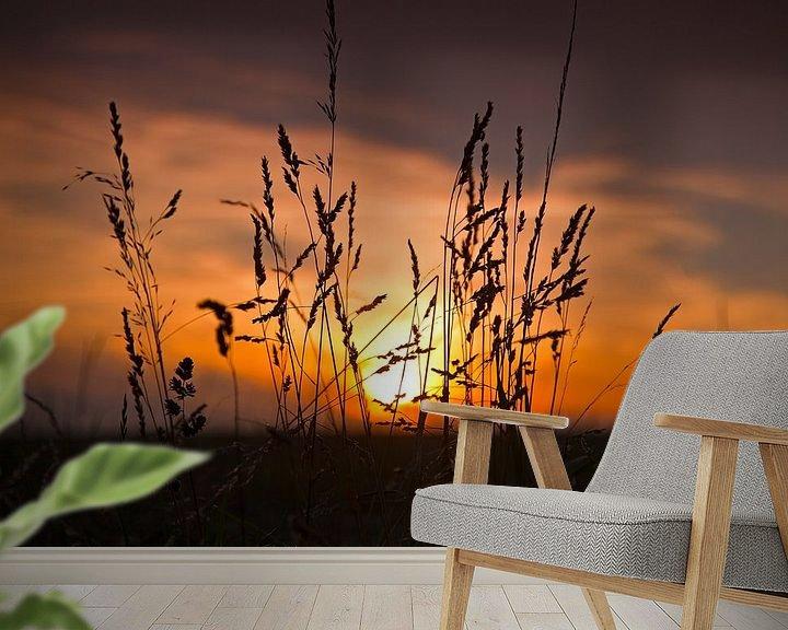 Impression: Le maïs avec le coucher du soleil sur Anton de Zeeuw