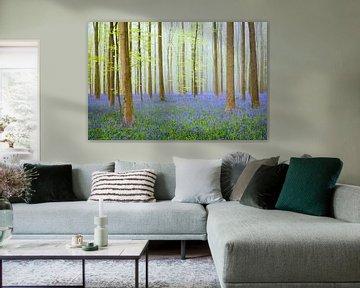 Lente bos met wilde hyacinten in het frisse groene beukenbos van Sjoerd van der Wal
