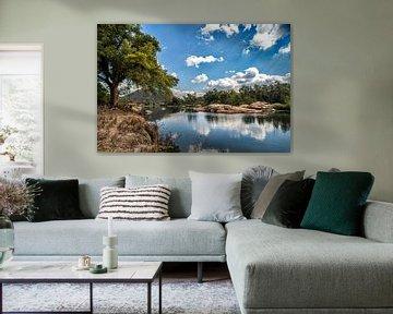 """Zuid-Afrikaans landschap """"Wet and dry"""" van Rob Smit"""