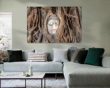 Boeddha beeld in een boom van Richard Guijt Photography