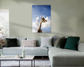 Giraffe vs hollandse lucht van Gwen Mustamu