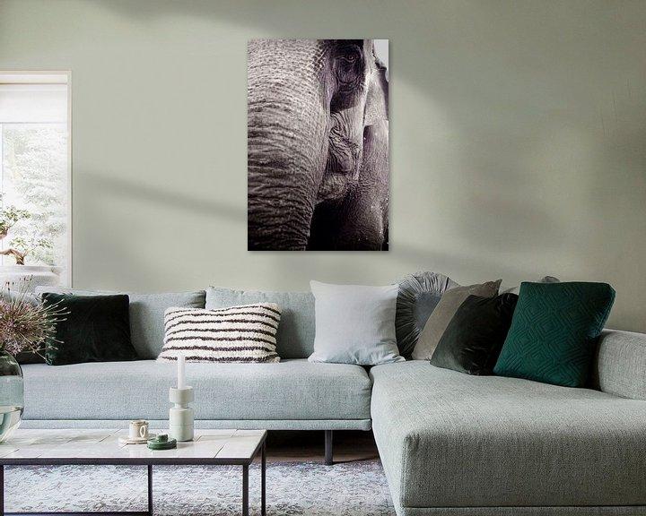 Sfeerimpressie: Olifant van Gwen Mustamu