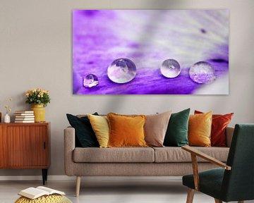 Drop Art van Jessica Berendsen