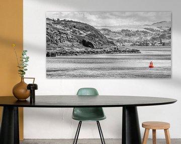 red buoy von Alex Hiemstra