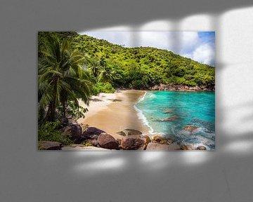 Droomstrand Anse Major -  Mahé - Seychellen van Max Steinwald