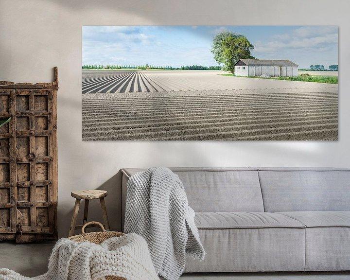 Sfeerimpressie: Aardappelveld in het voorjaar van Ruud Morijn