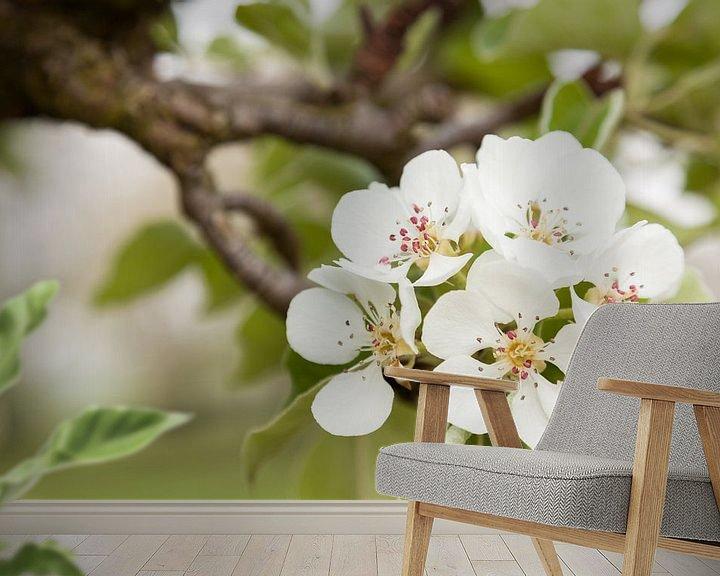 Sfeerimpressie behang: De kracht van bloesem van Marijke van Eijkeren