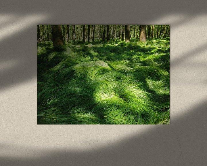 Sfeerimpressie: Dronken grassen van Titia Buren