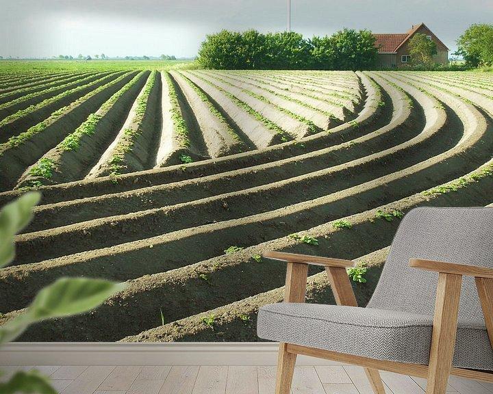 Sfeerimpressie behang: Aardappelruggen van Titia Buren
