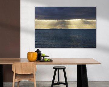 Ilhas Desertas van Michel van Kooten